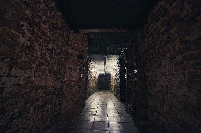 Cave humide : Pourquoi et comment assainir une cave en sous-sol ?